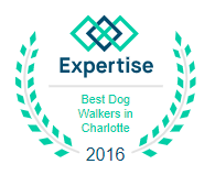 Expertise Best dog walkers 2016